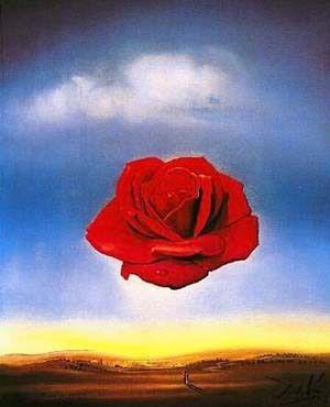 Centrale compositie. In deze afbeelding staat de roos in het midden, hij staat 'centraal' in deze afbeelding.