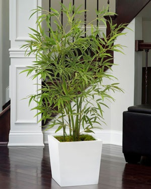 Silk Asian Bamboo Plant | Artificial Floor Plants for Sale Online