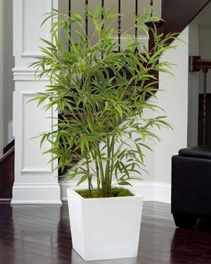 17 best ideas about artificial plants on pinterest artificial indoor plants artificial. Black Bedroom Furniture Sets. Home Design Ideas