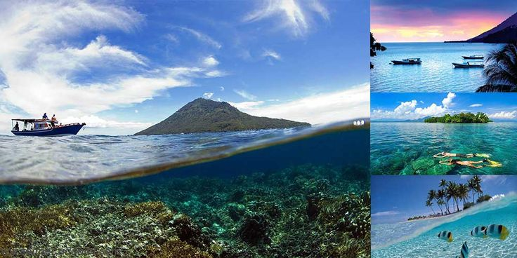 Dive with sea creatures in an undersea paradise – Bunaken, North Sulawesi