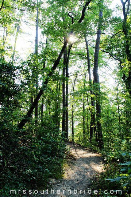 16 Best Hot Springs National Park Arkansas Images On
