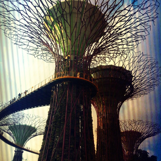 Garden By The Bay Music