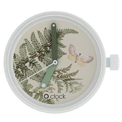 O clock watch dial - Botanical Fern