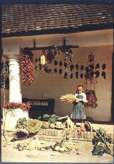 Falusi ház tornáca 1930