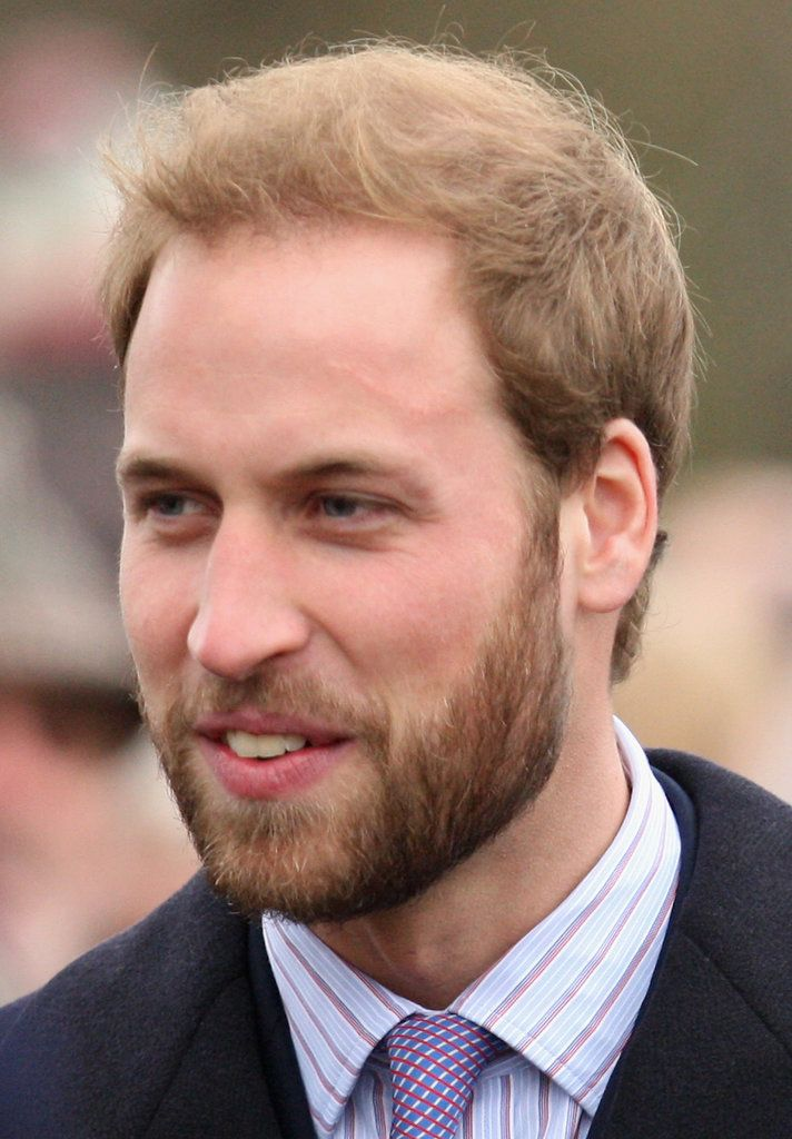 Let's Look Back at That Time Prince William Had Hot Facial Hair