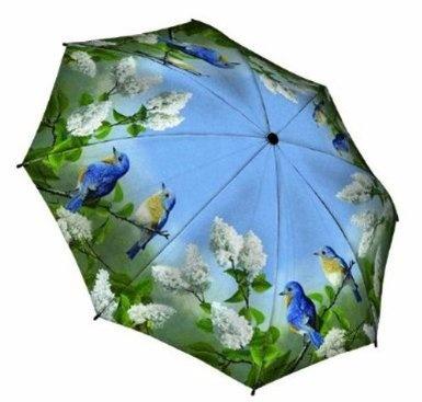 "Amazon.com: "" Hautman Brothers - Blue Birds "" - Galleria Compact Folding Umbrella - Auto Open & Auto Close: Clothing"