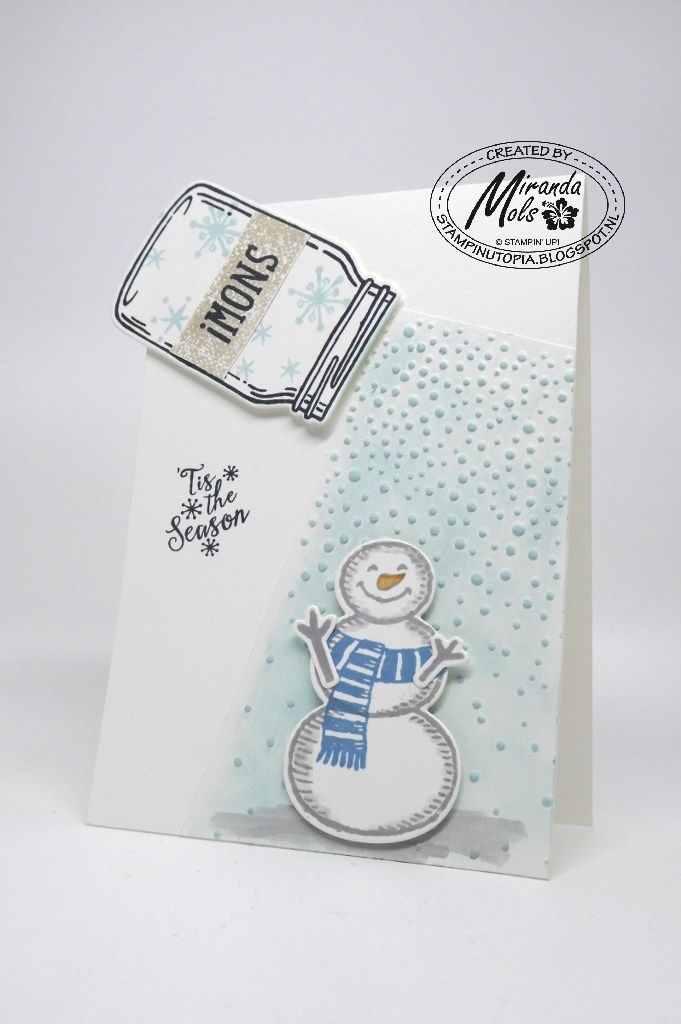 stampin up bestellen, love jar, snow place, softly falling, peaceful pines, tami white, Tami White tutorial, case,