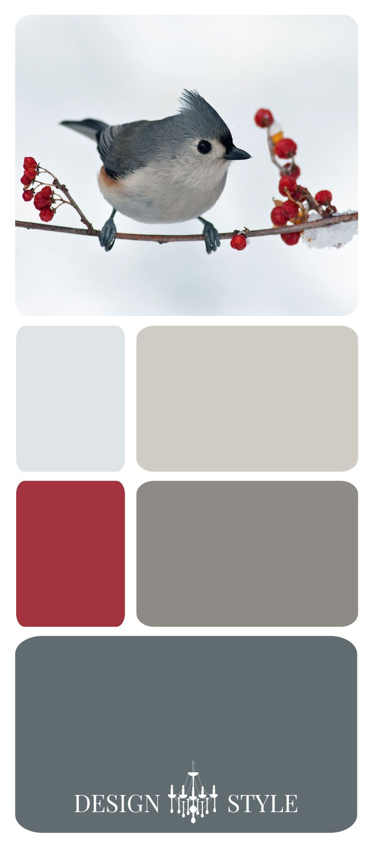 Color Inspiration Palette: Winter Bird-White, Beige, Taupe, Greige, Gray
