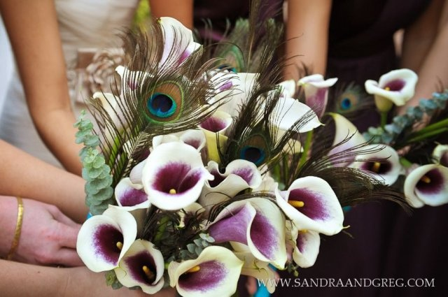 The bridesmaids bouquets consisted of Picasso calla lilies, peacock feathers and silver eucalyptus.  This wedding took place at the Emory Conference Center.