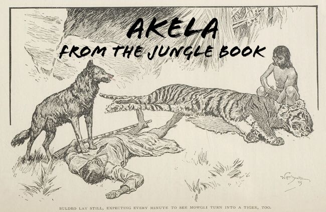 Akela from The Jungle Book