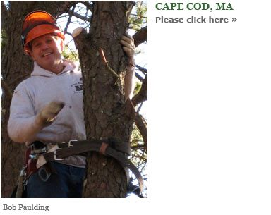 Eager Beaver Tree Service - a family owned, environmentally friendly company founded in 1977.  Certified Arborists who offer friendly, professional service at reasonable rates.  http://www.eagerbeavertreeservice.com/  A valued member of the Yarmouth Chamber of Commerce www.yarmouthcapec...