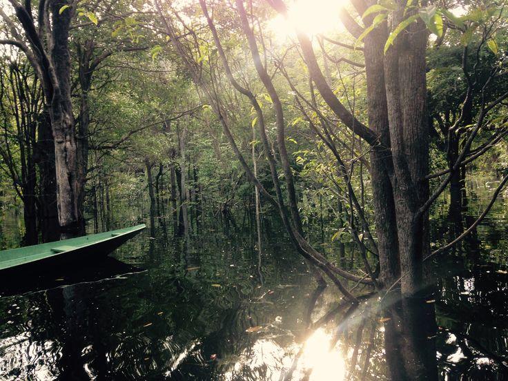 Amazônia, Brazil