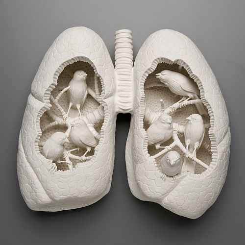 Artist Kate MacDowell creates sculptures that respond to environmental stressors including climate change, toxic pollution, and gm crops. She takes the concept of these environmental issues and fuses them with myths, art history, figures of speech and other cultural touchstones to achieve these striking porcelain pieces of art. Often mixing aspects of man and nature in one piece she portrays the friction and discomfort with the disturbing implication that we too are vulnerable.