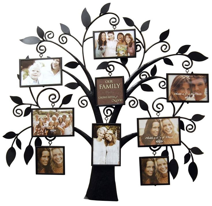family tree wall decorations | New View Family Tree Metal Collage Frame CHECK PRICE NOW