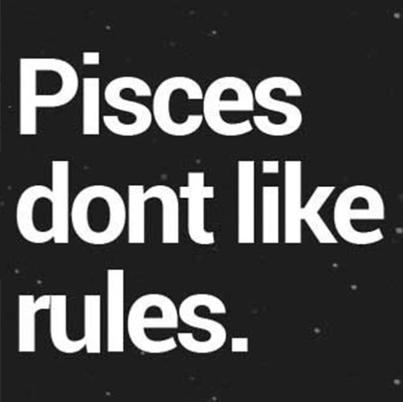 I make my own rules...which are no fucking rules. Live life how you want...just be smart about it!