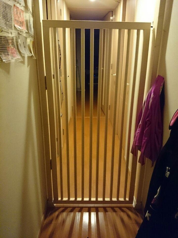 猫の脱走防止扉を自作してみました 玄関 猫 猫 ペットゲート