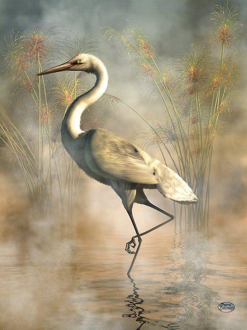 ♥ Egret | © deskridge