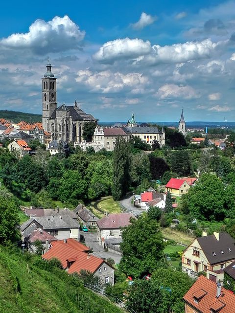 brno guys Hi guys, does anyone know where i can buy some decent quality lamb from in brno, not packaged cheers.