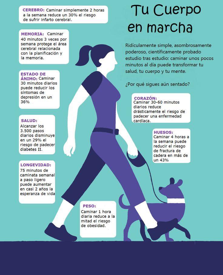 Caminar es una excelente manera de mejorar o mantener la salud en general. Con tan solo 30 minutos diarios se puede aumentar la capacidad cardiovascular, fortalecer los huesos, reducir el exceso de grasa corporal y aumentar la fuerza muscular y la resistencia. Además, esta actividad puede reducir el riesgo a desarrollar afecciones tales como enfermedades del corazón, diabetes tipo 2, osteoporosis y … #caminar #infografia