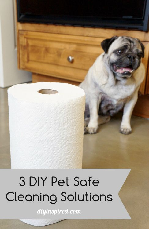Three Diy Pet Safe Cleaners Bloggers Best Ideas Pinterest Pets And Cleaning Products