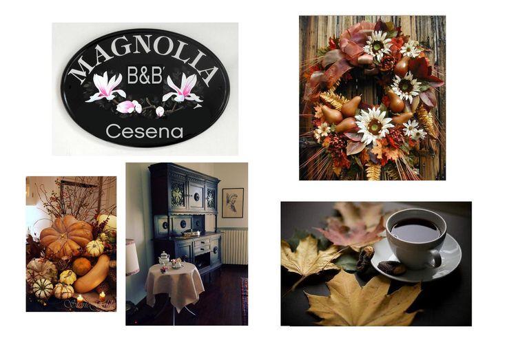 Autunno a Cesena alla Magnolia B&B