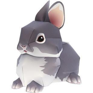 Conejo Enano Holandés,Animales,Arte de papel,Mamíferos,Conejo,Animales,Arte de papel,Serie de animales de compañía,Sencillo,Sencillo