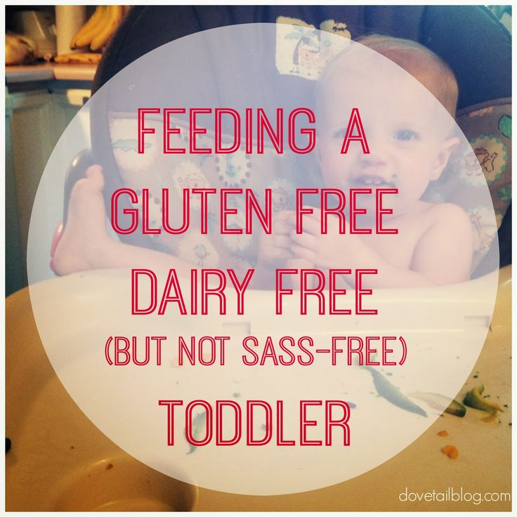 two weeks of meal ideas for gluten free dairy free toddler food