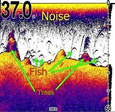 """Tight Lines and Plastic Boats: The Electronic Angler/ Part four """"Interpreting What you see on your fish finder"""""""