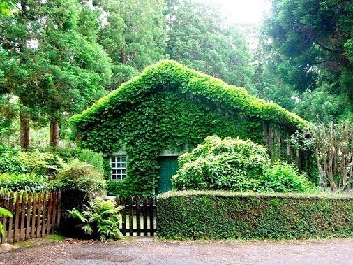 Sete Fontes, S. Jorge, Açores