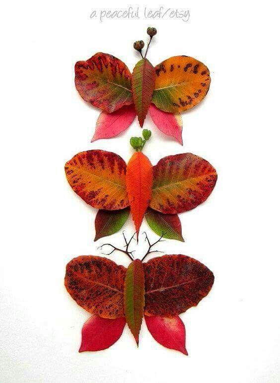 Farfalle di foglie
