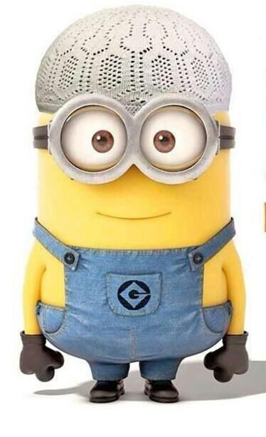 muslim minion