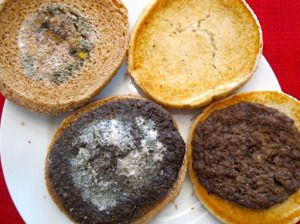 """Homemade hamburger vs McDonald's -- this McD's burger is 3 months old, compared to the 10 day old homemade grassfed burger.  If the ingredients are REALLY only """"""""100% pure USDA inspected beef; no fillers, no extenders. Prepared with grill seasoning (salt, black pepper)""""....why then, WON'T IT ROT?"""