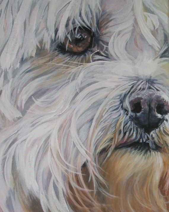 Maltese dog painting by L.A.Shepard