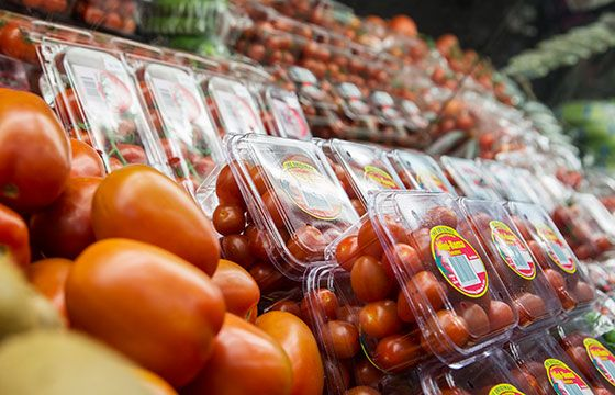 Tomatoes for every occasion | The Happy Apple