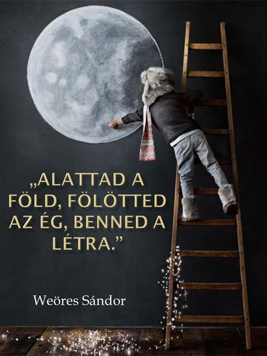 Weöres Sándor gondolata a célok eléréséről. A kép forrása: Vonzás Törvénye # Facebook