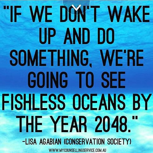 Heres a frightening prediction from scientists regarding fishing in our oceans quoted from the documentary Cowspiracy.