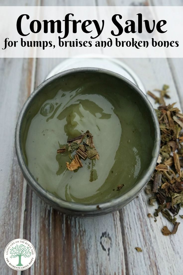 Comfrey known as one of the herbs to heal broken bones. This comfrey salve is a must have for your  home herbal apothecary. The Homesteading Hippy via @homesteadhippy