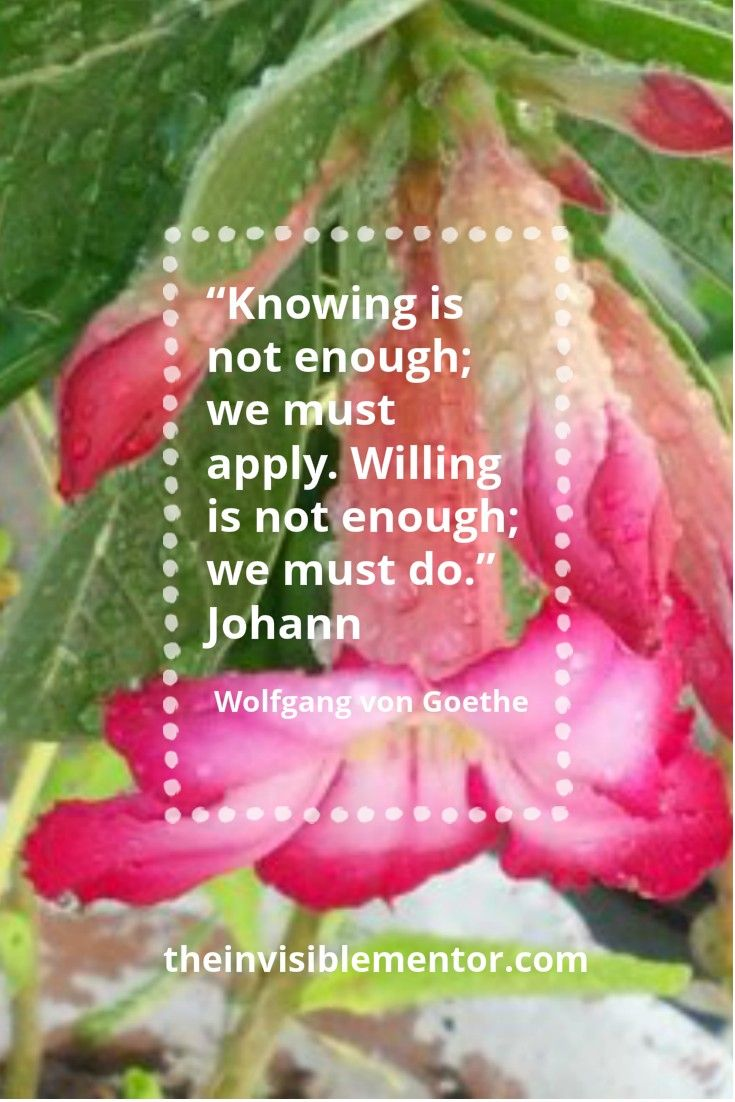 """""""Knowing is not enough; we must apply. Willing is not enough; we must do."""""""