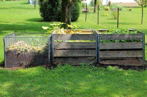 La mejor manera de usar las cenizas de madera en el jardín es extenderlas sobre las camas de cultivo. Aunque, como todos los fertilizantes, hay que usarlas con mesura. Hay que tener presente que un…