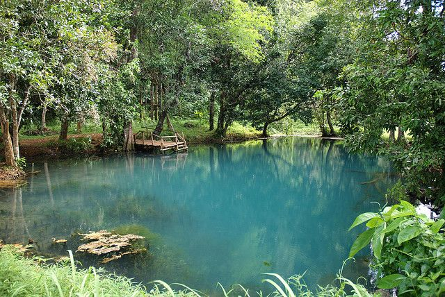 Les 25 meilleures id es de la cat gorie construire un pont - Construire une piscine naturelle ...