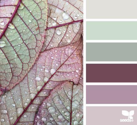 soft greens + purples.