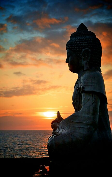 """Do not dwell in the past, do not dream of the future, concentrate the mind on the present moment."" - Budha"