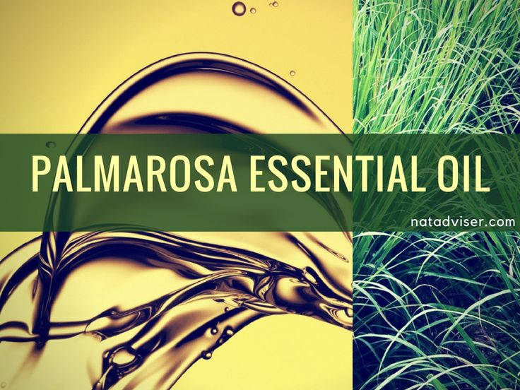 Palmarosa Essential Oil Uses, Benefits and Recipes - http://natadviser.com/palmarosa-essential-oil/