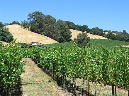 Santa Rosa, California - Wikipedia, the free encyclopedia