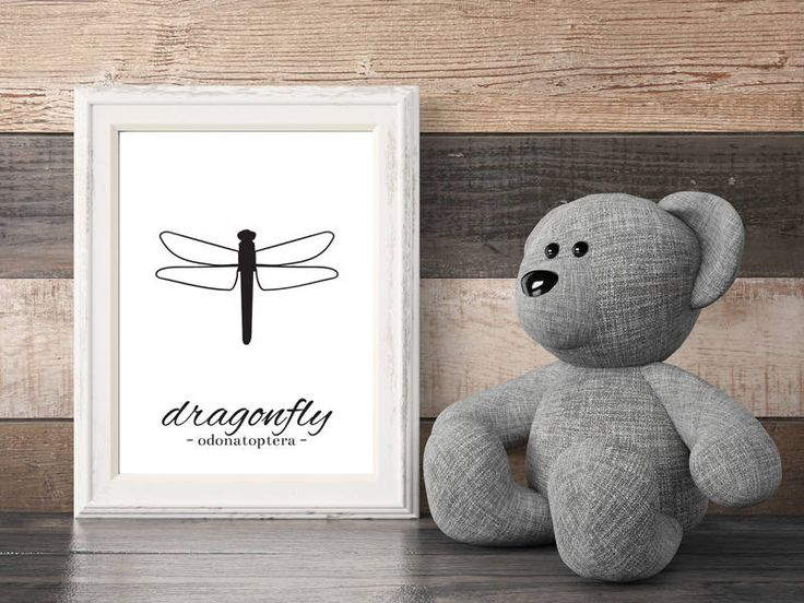 DRAGONFLY. For Office, Housewarming Gift, Home decor, Gift idea, Animal, Graphic Animal, Insect, Fly, for kids, For office by MerryGallery on Etsy