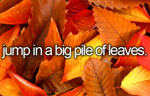 What makes Fall so much FUN = Jumping into a BIG pile of leaves...: