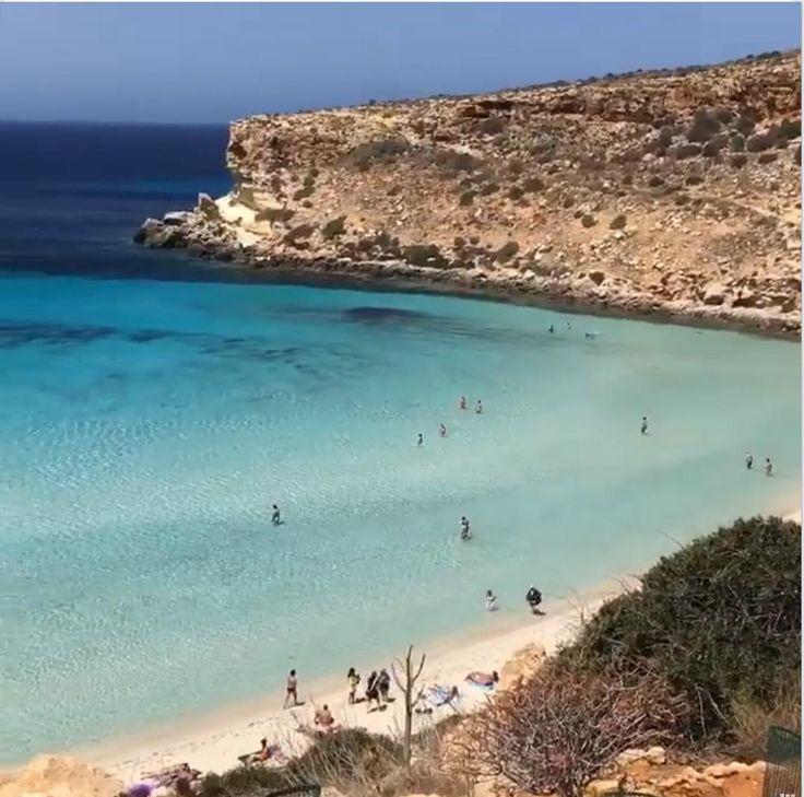 Ma Voi Continuate Ad Andare A Rimini Lampedusa Isoladeiconigli