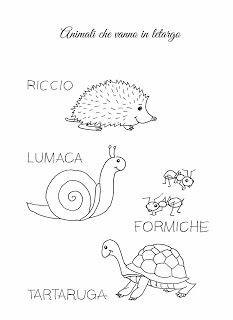 La maestra Linda : Autunno: gli animali che vanno in letargo