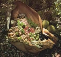 Australian Bush Tucker – Native Fruits