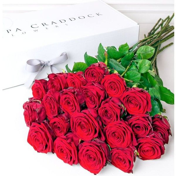 PHILIPPA CRADDOCK Twenty four red roses bouquet (190 PAB) ❤ liked on Polyvore featuring home, home decor, floral decor, flowers, backgrounds, fillers, other, rose home decor, red rose bouquet y red home decor